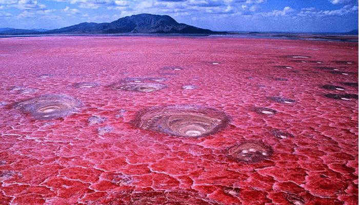 Lago Natron (Tanzania)