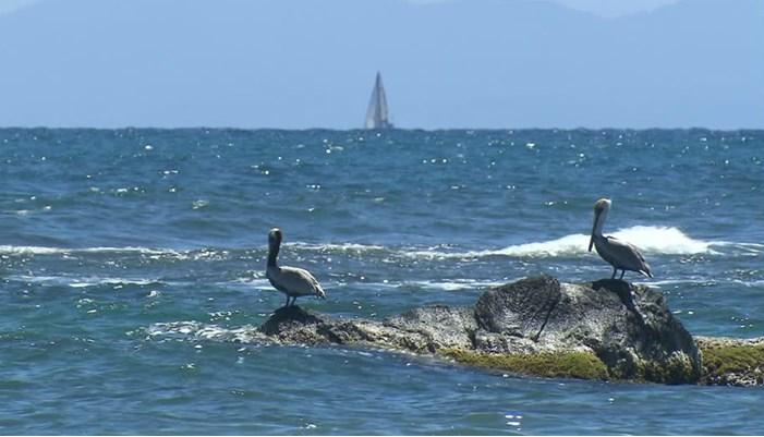 Importancia económica del oceano atlantico