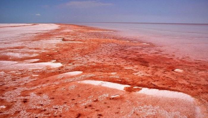 Amenazas que se haya en el mar rojo