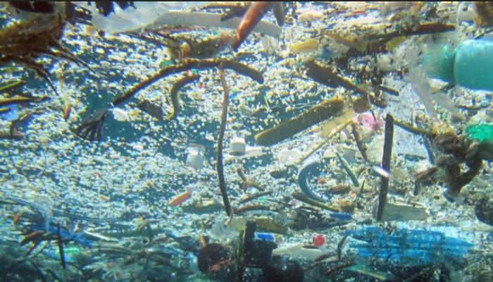 Contaminación de los océanos