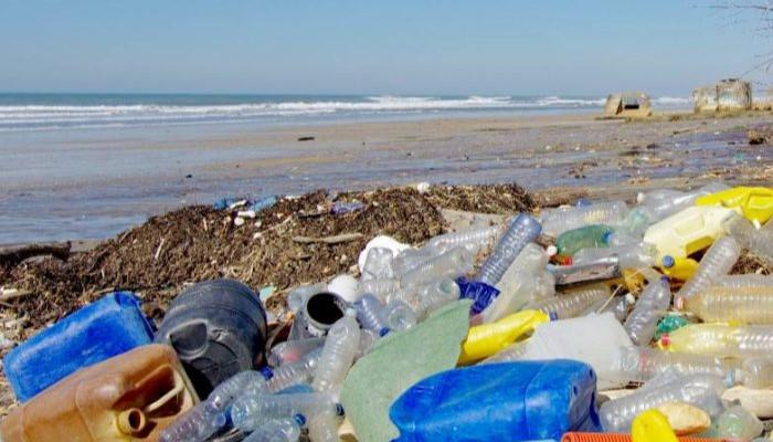 Contaminación de los océanos pone en peligro la vida marina