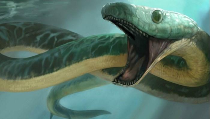 Serpientes de mar